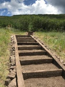 Deer Mountain stairs