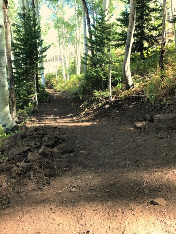Mid-Mtn Trail